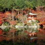 Những lý do Nhật Bản hấp dẫn du khách