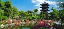 Những nét đặc trưng của văn hóa Nhật Bản